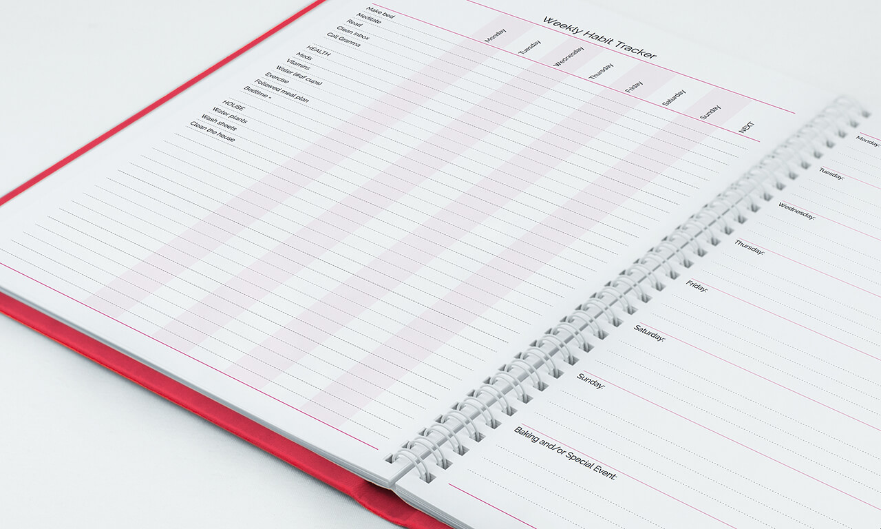 Agendio pink planner clear view of the wire binding